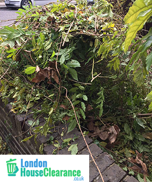 Garden Clearance in London